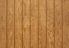 Planche en bois naturelle avec la texture Photo libre de droits
