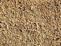 Plancher brut de sable photo stock