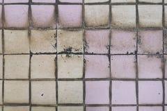 Plancher carrelé dans les taches et le champignon de sélection d'abus de toilette Le concept de l'humidité et du dir photographie stock libre de droits