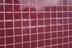 Plancher carrelé dans les taches et le champignon de sélection d'abus de toilette Le concept de l'humidité et de la saleté images libres de droits