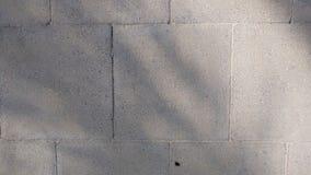 Plancher carrelé pour des textures de fond photo stock
