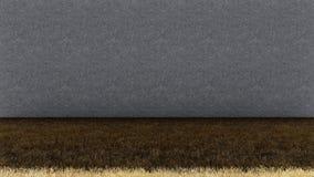 Plancher d'herbe sèche et mur en béton photo libre de droits