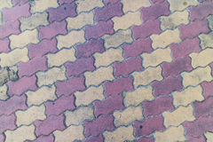 Plancher de brique de ciment Images libres de droits