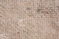 Plancher de ciment Photos libres de droits