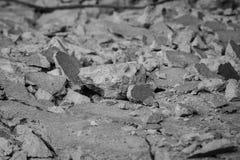 Plancher de ciment photos stock