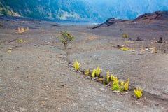 Plancher de cratère Image stock