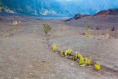 Plancher de cratère Photographie stock libre de droits