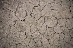 Plancher de sécheresse Images stock