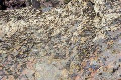 Plancher de vallée de la rivière tordue Photo libre de droits