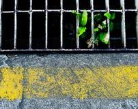 plancher en béton et drainage avec la ligne jaune image libre de droits