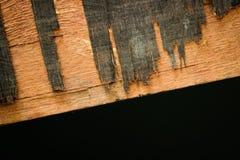 Plancher en bois décadent d'étape photo libre de droits