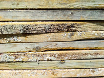 Plancher en bois de bois de construction image libre de droits