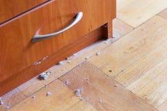 Plancher en bois dur sale avec la poussière Images libres de droits