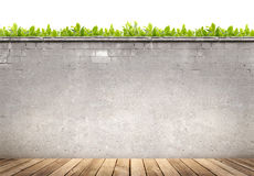 Plancher en bois et mur en béton sur le fond de feuilles de vert Photo stock