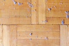 Plancher en bois poussiéreux sale Photos stock