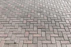 Plancher gris de ciment, vieux bloc de brique images stock