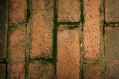 plancher vertical de brique image stock