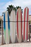 Planches de surf Photographie stock libre de droits