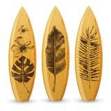 Planches de surf en bois avec les feuilles tropicales tirées par la main illustration stock