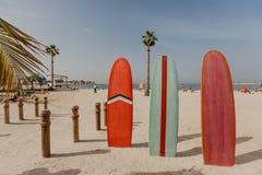 Planches de surf sur l'endroit de plage photographie stock