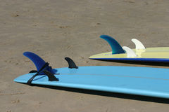 Planches de surfing Images stock