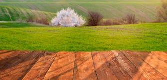 planches en bois avec le paysage italien sur le fond Photographie stock libre de droits