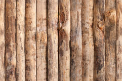 Planches en bois sans joint Photos stock