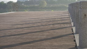 Planches et piliers Image libre de droits