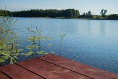 Plancia di legno di Brown con la piccola ragazza e cane simile a pelliccia contro cielo blu ed acqua e foresta e canne verdi Immagine Stock