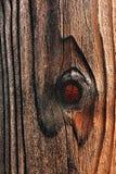 Plancia di legno della rete fissa con i nodi Fotografia Stock Libera da Diritti