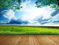Plancia di legno sui campi verdi Fotografia Stock