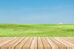 Plancia di legno sul campo di erba verde e sul fondo naturali del cielo Immagine Stock