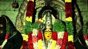 Plandeka puszek - statua hinduska bogini zbiory wideo