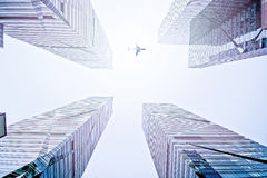 Plane  above the modern city Stock Photography