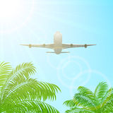 Plane above the palms Royalty Free Stock Photography