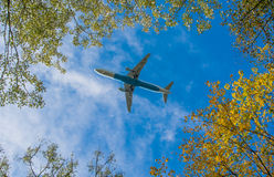 Plane beneath trees Stock Photography