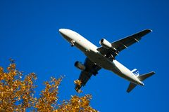 Plane with bushes Stock Photos