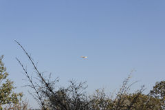 Plane in clear blue sky Royalty Free Stock Photo