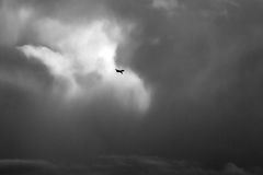 The plane in clouds Royalty Free Stock Images