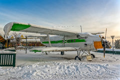 Plane covered snow Stock Photography