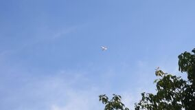 The plane lands and hides behind the trees.
