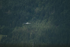 Plane flies over the forest Stock Image