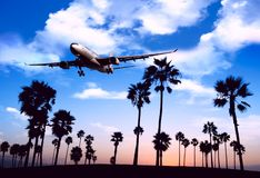 Plane flies over the palm trees. Travel concept with aircraft and palm trees. Plane flies over the palm trees. Travel concept with aircraft, clouds and palm royalty free stock photos