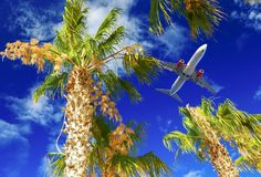 Plane flies over palm trees. Travel concept with aircraft, clouds and palm trees. Plane flies over the palm trees. Travel concept with aircraft, clouds and palm royalty free stock image