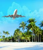 Plane flies over the palm trees. Travel concept with aircraft and palm trees. Plane flies over the palm trees. Travel concept with aircraft, clouds and palm stock image