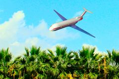 The plane flies over the tropical trees to land on a clear. Sunny summer day royalty free stock photo