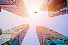 Plane fly above the modern city Stock Photo