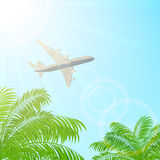Plane flying above the palms Royalty Free Stock Image
