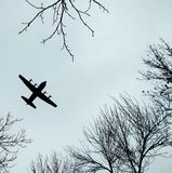 Plane flying above the trees. Against the gray sky Royalty Free Stock Photo