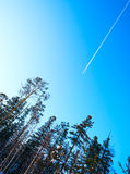 Plane flying high in the sky over winter forest. Stock Images